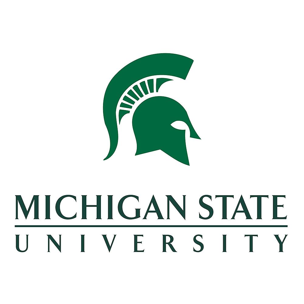 Image result for msu logo